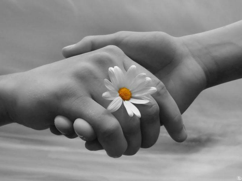 Take My Hand, Take My Heart