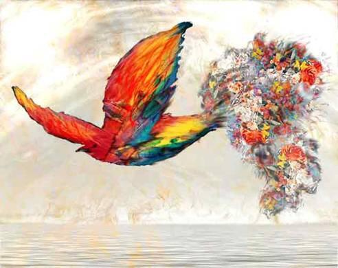 Paradise-bird