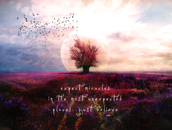 Expect_miracles_by_phatpuppyart-d4o551c