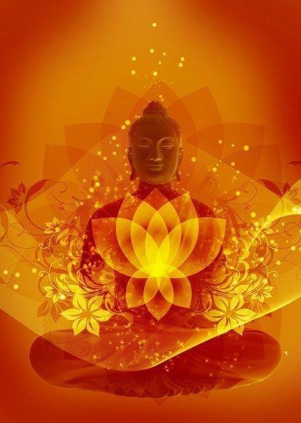 Buddhaorangelotus